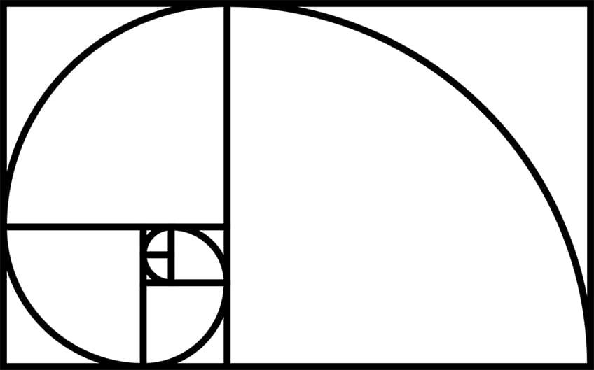 a drawing of the Fibonacci spiral