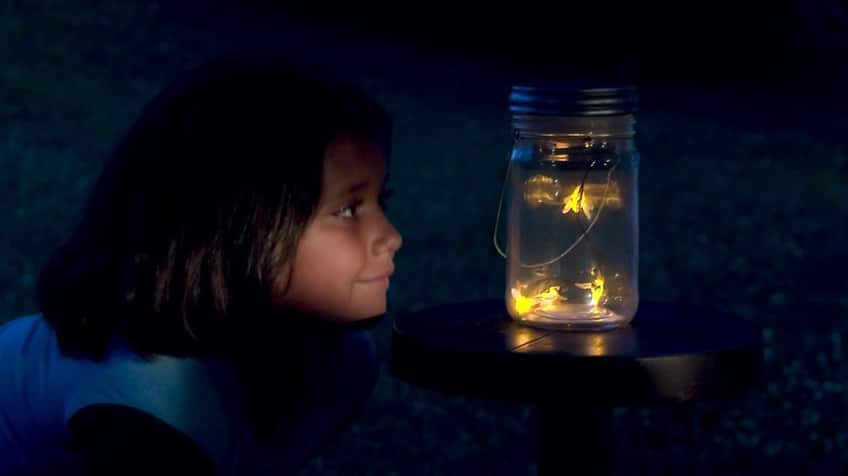 little girl looking at a jar with fireflies in it