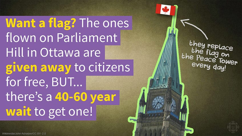 Want a flag from Parliament? There's a 50 year wait.