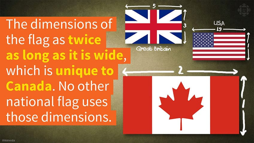 The dimensions of our flag are twice as long as wide and no other flag has these dimensions