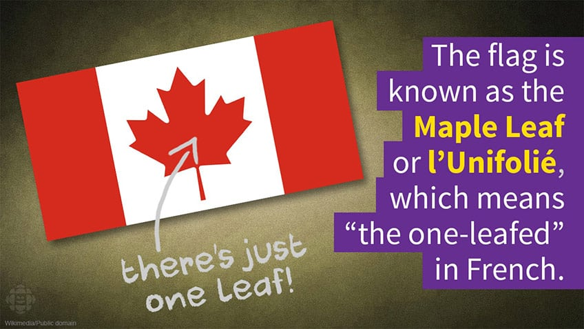 The flag is known as the Maple Leaf or l'Unifolie which means single-leafed in French