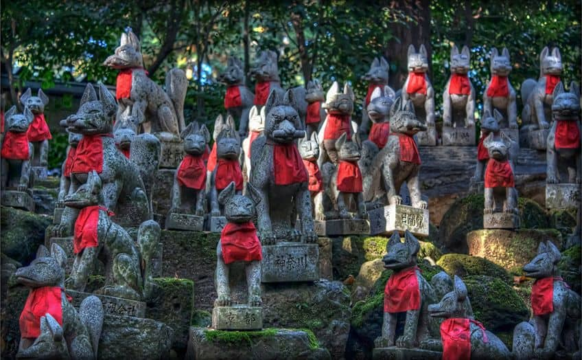 a forest of fox statues