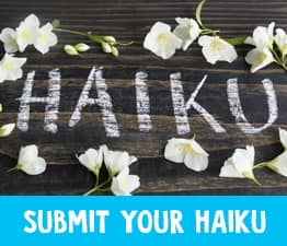 Click here to submit your best haiku to us and have it posted online
