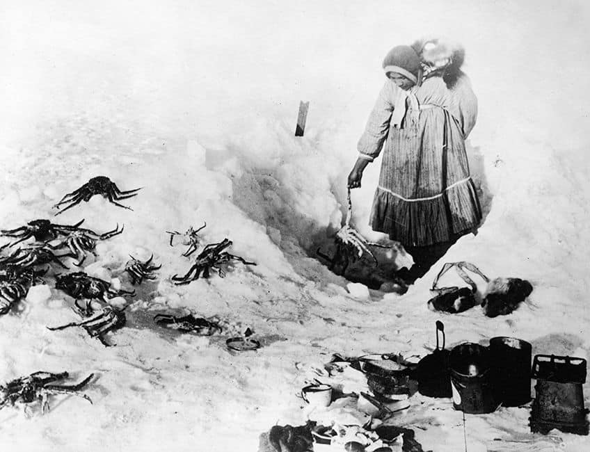 historical photo of an Inuit woman out on the ice with crab all around her that she has fished out from the water