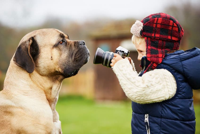 a young boy holds a camera up to the face of a big dog
