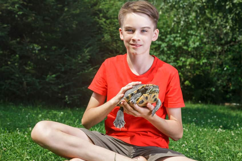 a young boy in shorts and red shirt sits outside and holds his turtle in his hands