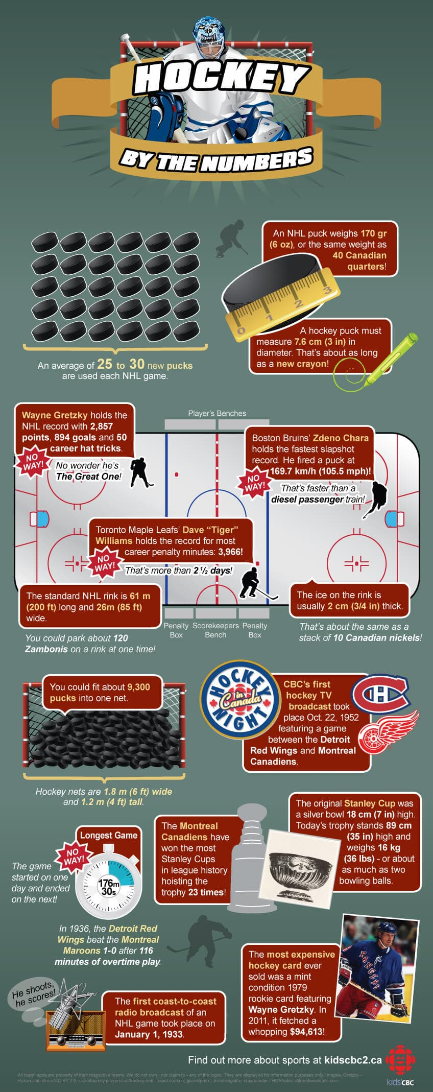 hockey by the numbers infographic