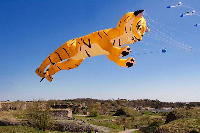 9 Kites So Fun You Ll Want To Go Fly Your Own Explore