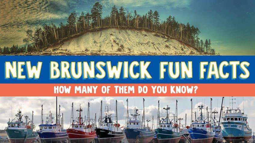 new brunswick quiz