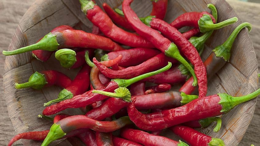 A bowl full of red chili peppers/