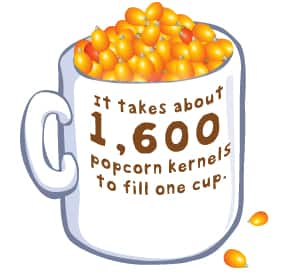 It takes about 1600 popcorn kernels to fill one cup