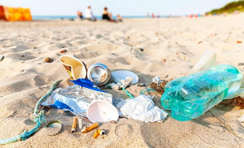 A lot of trash gets washed up on beaches or just left there for animals to find
