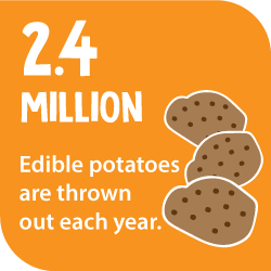 2.4 million edible potatoes are thrown out each year