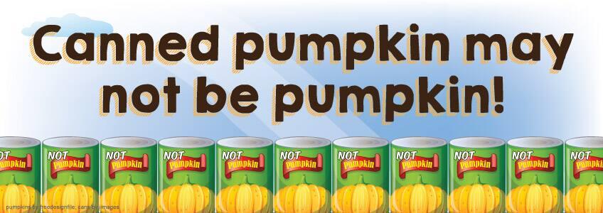 Canned pumpkin may not be pumpkin