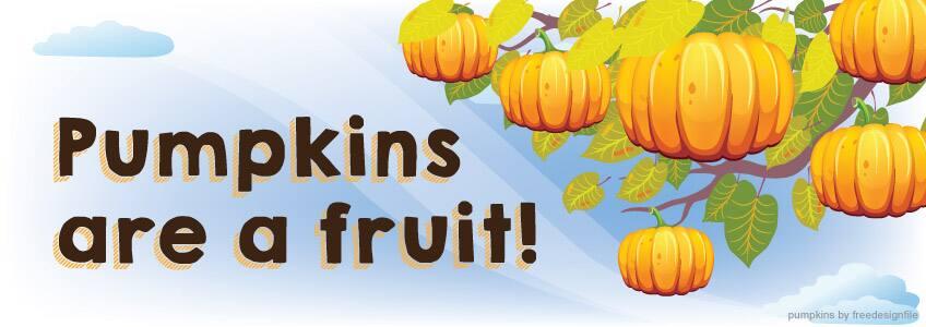 Pumpkins are a fruit