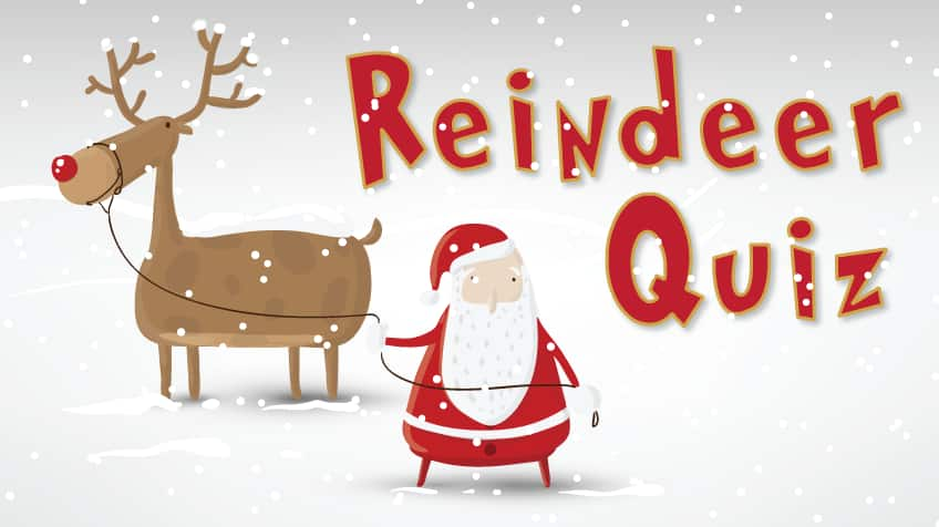 Click to take the reindeer quiz