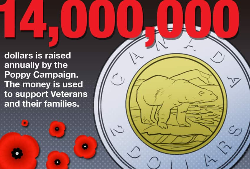 14000000 dollars is raised annually by the Poppy Campaign and the money is used to support veterans and their families.