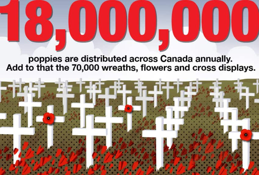 18000000 poppies are distributed across Canada annually. Add to that the 70,000 wreaths, flowers and cross displays.