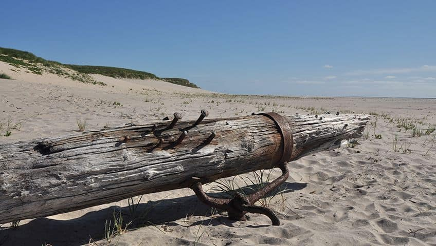 Part of a wooden ship wrecked on the beach of Sable Island