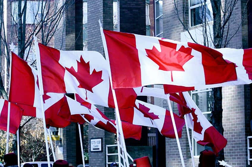 a bunch of Canadian flags
