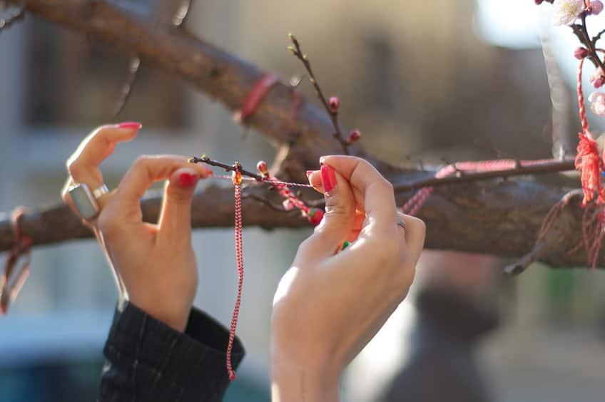 woman's hands tying bracelets onto tree branch