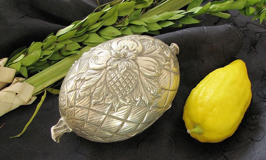 a lulav, an etrog and a silver holder for the etrog
