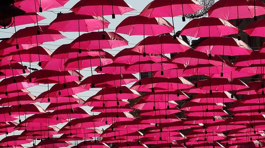 Dozens of pink umbrellas