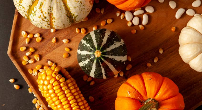 different types of squash, corn and corn kernels and white beans