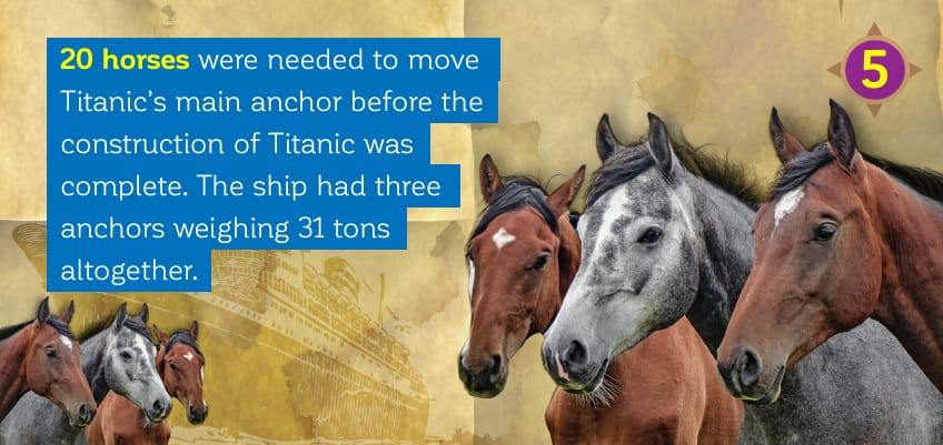 20 horses were used to move Titanic's main anchor before the construction of Titanic was complete.
