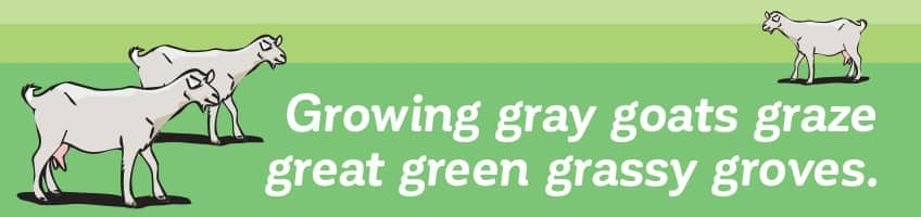 Growing gray goats graze great green grassy groves.