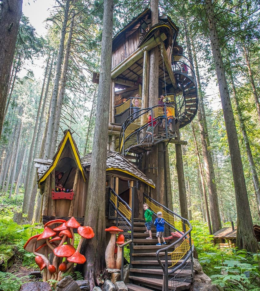 enchanted forest treehouse