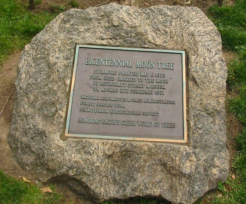 a plaque showing the planting of a tree using seeds that went to space