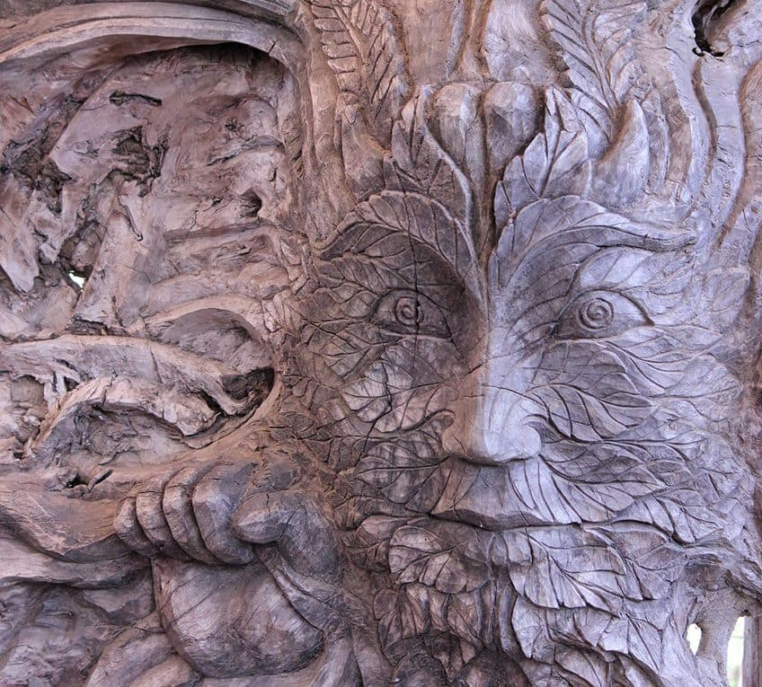 a face carved into a tree trunk