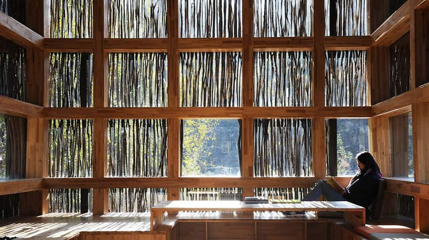 A library that is covered in twigs to filter light.