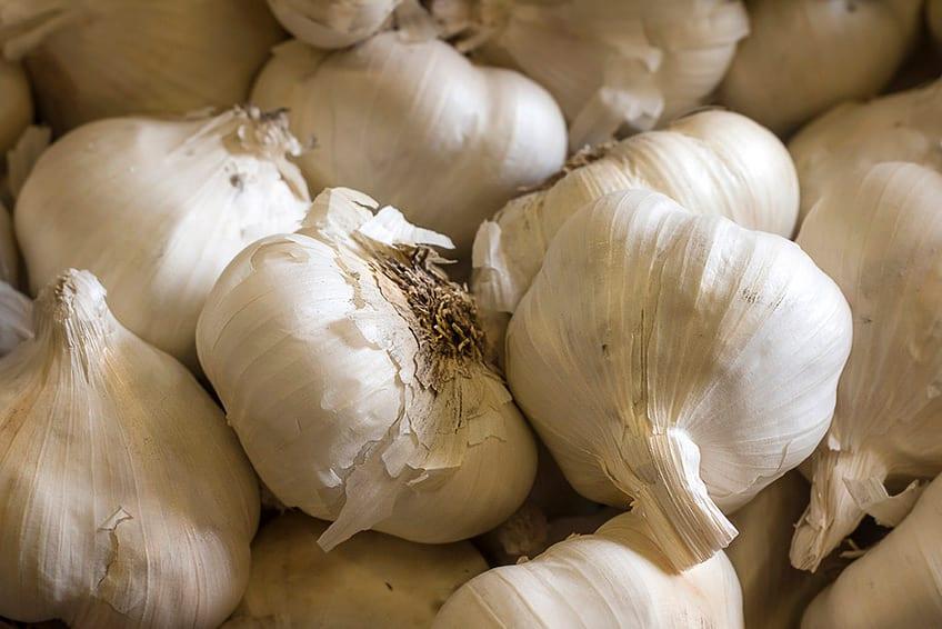 a whole bunch of raw garlic
