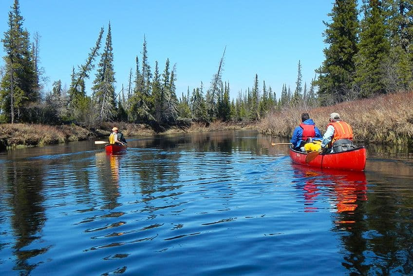 paddlers in canoes