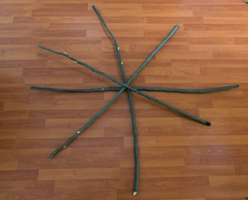 stick put together in a star pattern