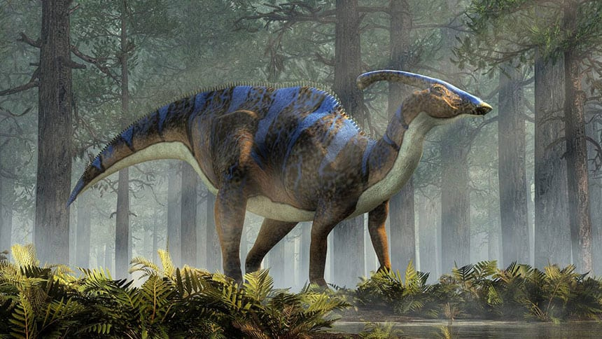 12-year-old discovers 69-million-year-old dinosaur fossil while hiking