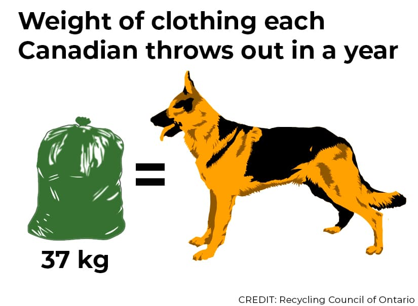 Weight of clothing each Canadian throws out in a year. Garbage bag equals big dog. Both weighing 37 kg. Credit: Recycling Council of Ontario.