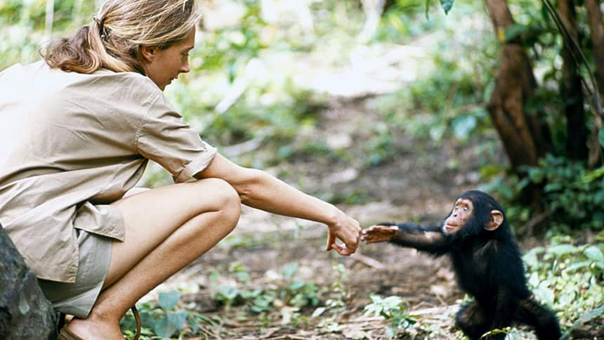 Jane Goodall on how she made her dream of living with