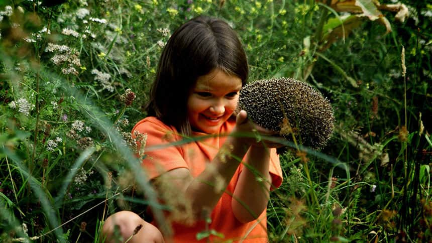 Girl sits in grass holding hedgehog.