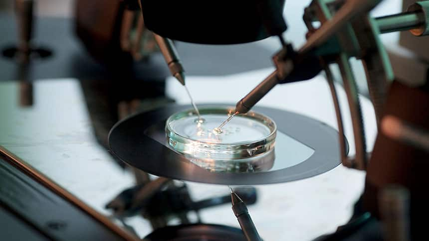 Scientific instruments at work in a petrie dish in a lab.