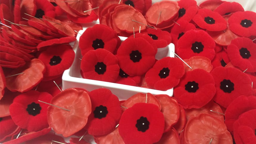 A box of poppies for Remembrance Day