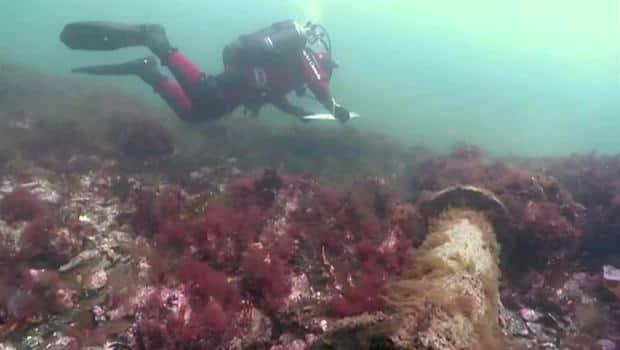 Louisbourg Wrecks