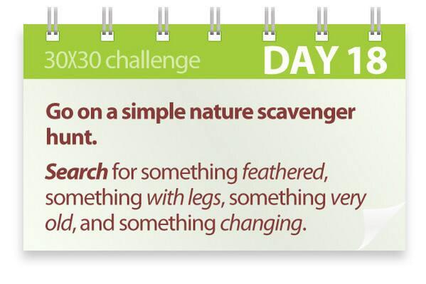 Challenge #18