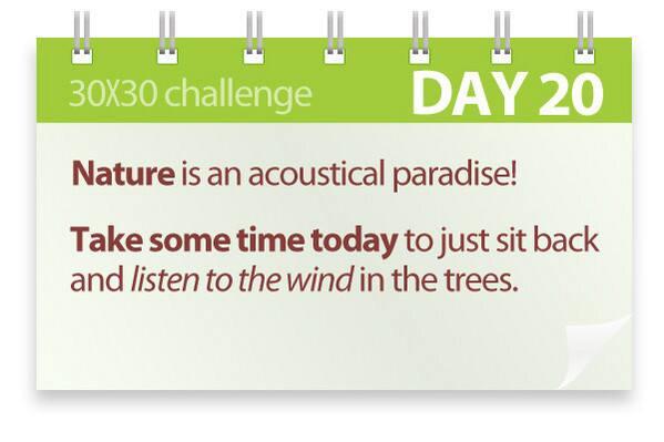 Challenge #20