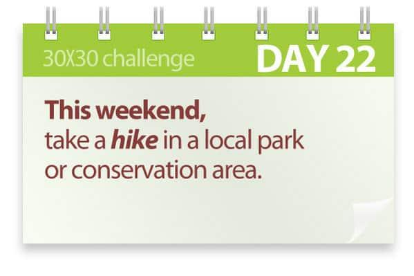 Challenge #22