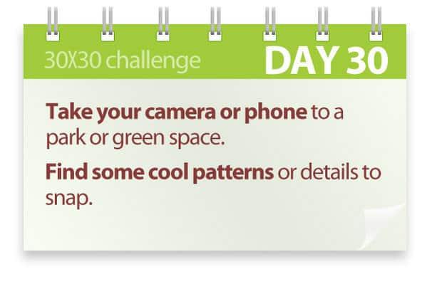 Challenge #30