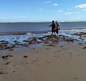 challenge26-beach-johannecbc-290.jpg
