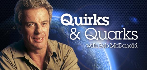 Quirks & Quarks